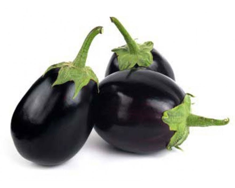 Brinjal Big (Bharta) – 450gms. to 550gms.